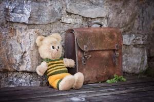 teddy-828506_1920-ConvertImage